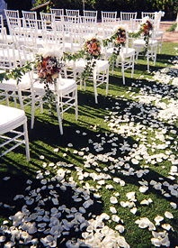 17 Best Images About Wedding Aisle On Pinterest