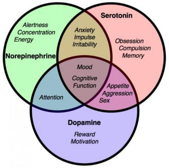 Norepinephrine, Serotonin and Dopamine.