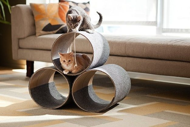 These tubes are perfect for hiding and scratching. | 26 DIYs Your Pet Will Totally Appreciate