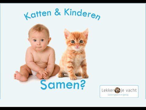 Zijn katten gevaarlijk voor kinderen?