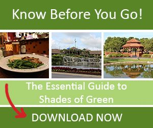 The Essential Guide to Shades of Green. Disney World is a class act. This is what they have for our Military:)