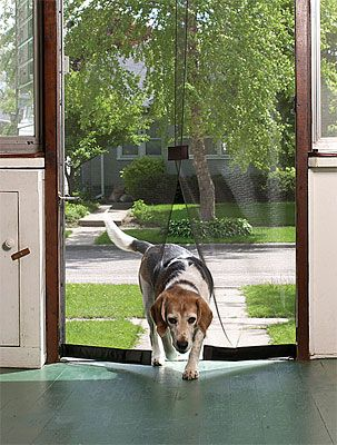 """Instant Screen Door """"I love this door screen and my 200 lb. dog is acting like he just got his drivers license. Freedom... I swear if he could talk and had friends with credit cards this product couldn't stay in stock. And honestly, the dog could have installed it."""""""