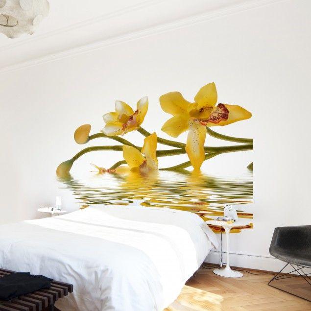 Fototapete Orchidee - Saffron Orchid Waters - Vliestapete Quadrat