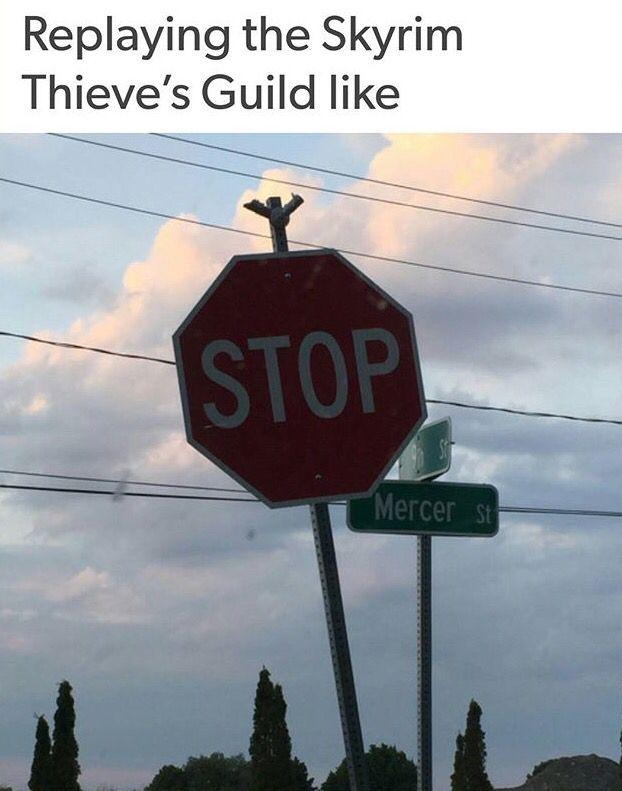 Skyrim Thieve's Guild.