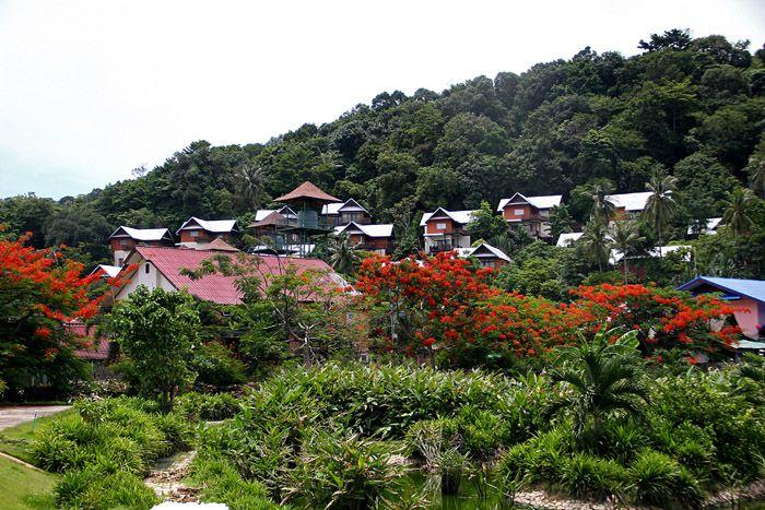 Путешествие на острова Пи Пи. Часть первая: Пи Пи Дон, ночная жизнь Пи Пи
