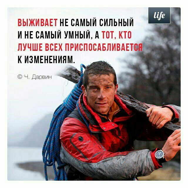 Ч. Дарвин                my life project instagram
