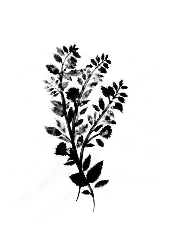 Черно-Белый Ботанический Постер | Awesome Print Studio