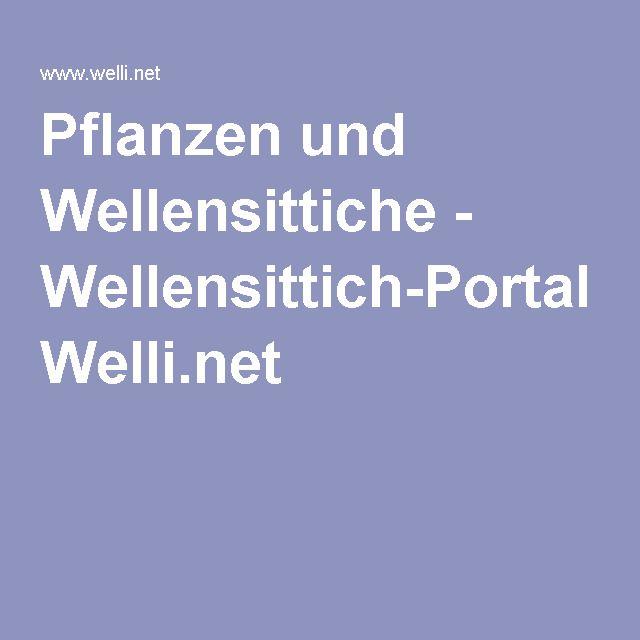 Pflanzen und Wellensittiche - Wellensittich-Portal Welli.net