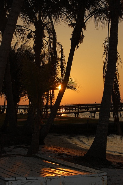 16 more days and I will be here!!! :) Pine Island, Cape Coral, FL