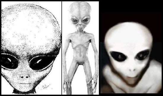 Alien Doctor's: Grey's? Aliens have different species and Greys are a projected alien species that is most commonly connected with the alien abduction phenomenon. It is believed that Greys are intelligent extraterrestrials who visit Earth & secretly perform medical experiments on humans. According to Paranormal claims and sightings Greys as small bodied, sexless beings who has smooth grey skin, an enlarged head and large eyes. They are termed as humanoid beings and their bodies are usually…