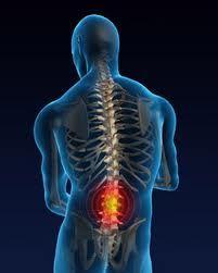 cara menyembuhkan sakit pinggang cara menyembuhkan sakit pinggang cara menyembuhkan sakit pinggang cara menyembuhkan sakit pinggang cara menyembuhkan sakit pinggang cara menyembuhkan sakit pinggang cara menyembuhkan sakit pinggang cara menyembuhkan sakit pinggang