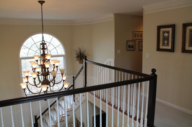 Image Result For Interior Paint Ideas