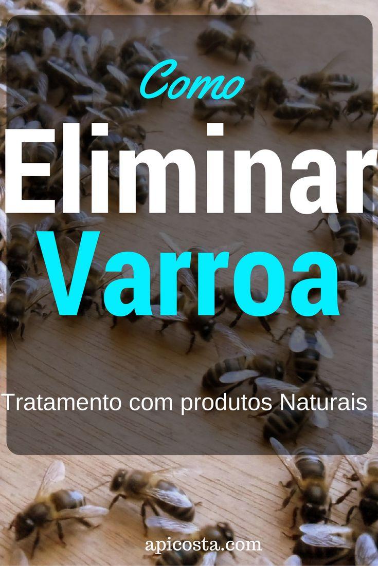 Como Eliminar a Varroa - Tratamento com Produtos Naturais http://apicosta.com/como-eliminar-a-varroa/