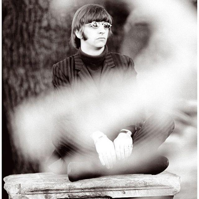 Ringo <3                                                       …