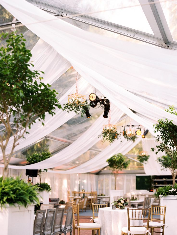 Gorgeous Clear Top Tent with Champagne Drapery Cascading from Interior  Tenting - Party Plus Tents + Events Planning - Lauren Niles Events Florals - Kruse & Viera, Plant Farm Rentals Photography - Renee Hollingshead Photography Catering - Main & Market