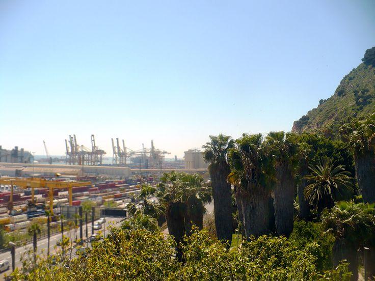 CACTUS GARDEN IN BARCELONA CITY