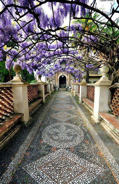 Wisteria-covered passage at Villa d'Éste, Tivoli, Italy
