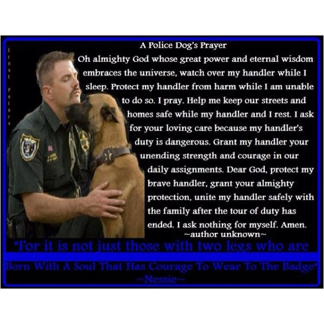 146 best Soldiers and Military Dogs images on Pinterest Service - k9 officer sample resume