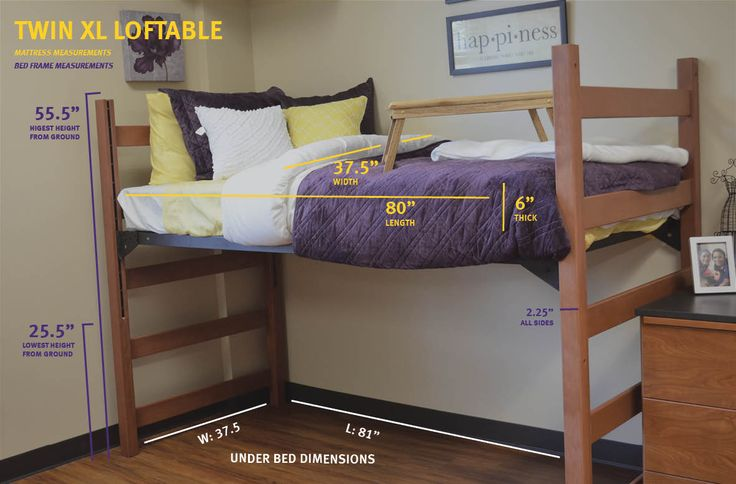 Measurements For A Twin Xl Loftable Bed Move In Day