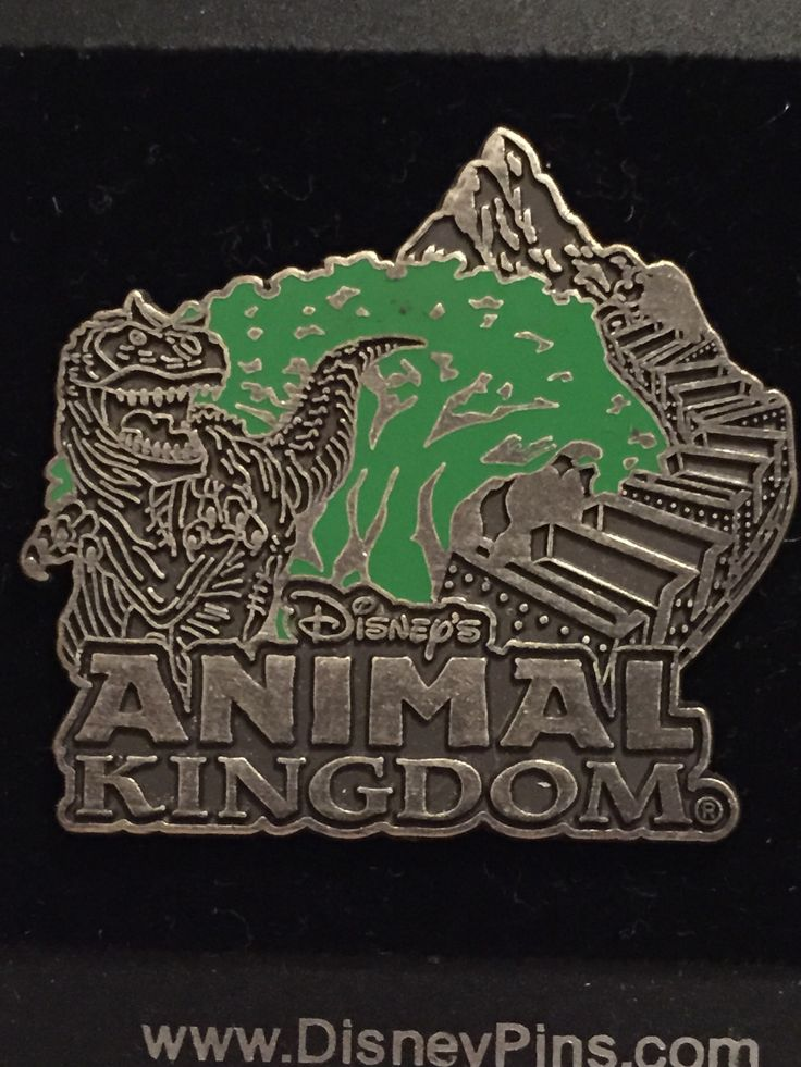 Animal Kingdom Icons Pewter-like Logo Disney Pin