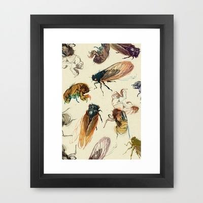 summer cicadas by Teagan White