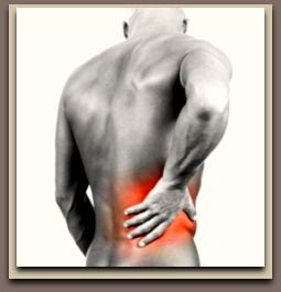 The Six Top Exercises for Strengthening and Defining Your Upper And Lower Back Muscles