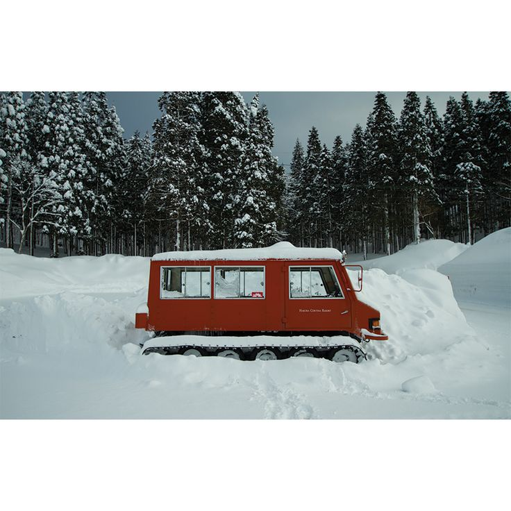 1000 Images About Follow The Snowcat On Pinterest Old