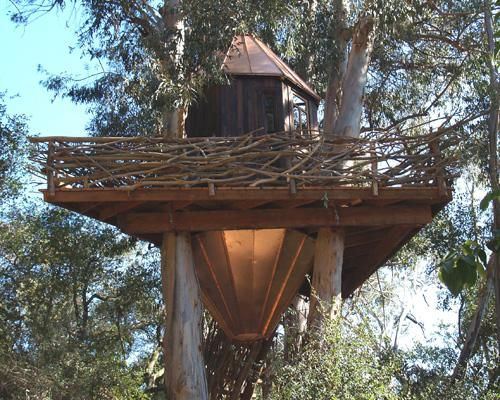 Best Treehouses Images On Pinterest Tree House Designs - Contemporary banyon treehouse california