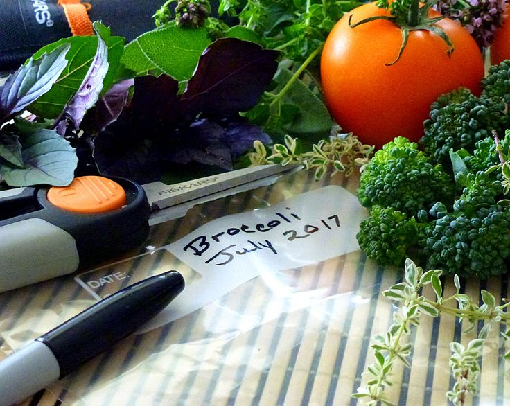 Freeze It! Quick Tips for Freezing Garden Produce