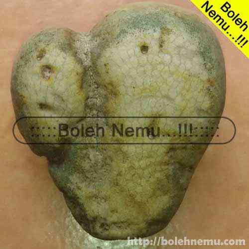 Batu Sisik Ular