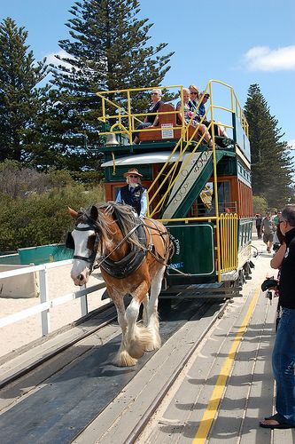 Flickr • Clydsdale pulling horse drawn tram on the causeway to Granite Island • Victor Harbor South Australia • Granite Island