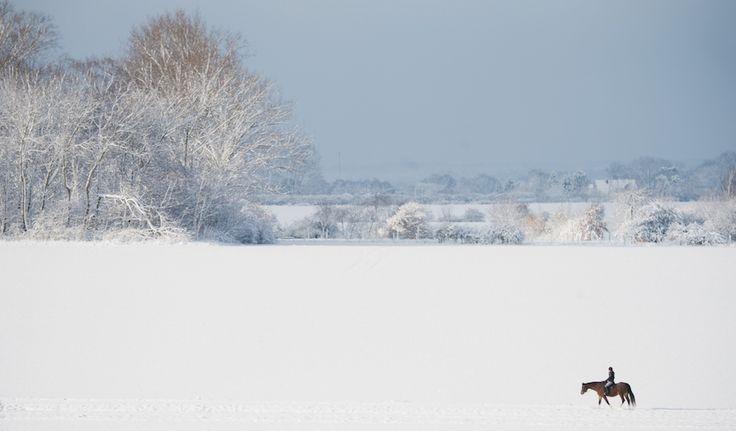 Le foto della neve in Germania - Il Post