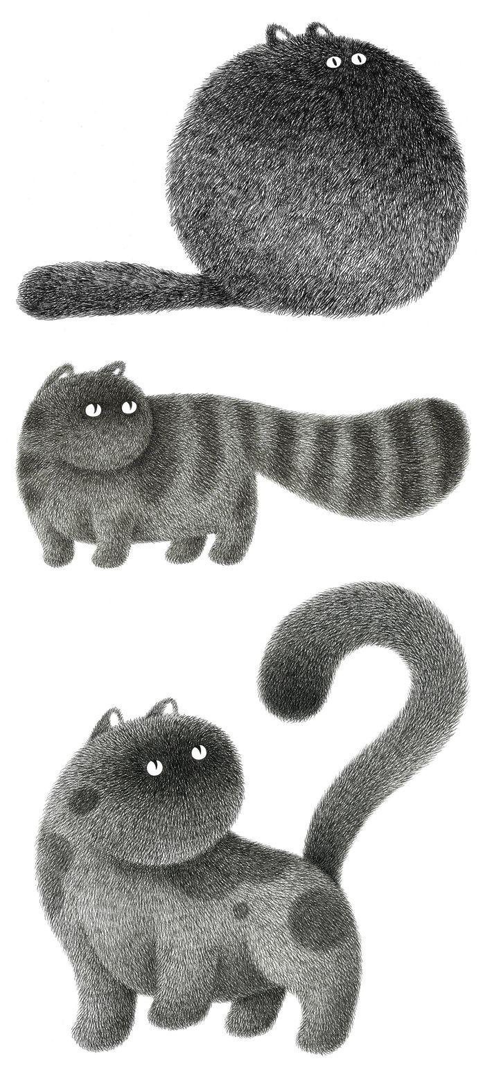 Fluffy cat illustrations by Kamwei Fong #catart