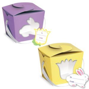 Springtime Purple & Yellow Single Cupcake boxes