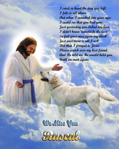 Picture of dog in Heaven with Jesus | Dog | Dogs, Dog heaven