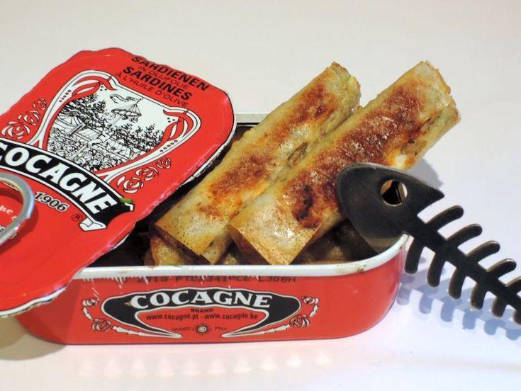 Ik ben helemaal niet gek van sardines, niet vers en niet uit blik. Toch moet ik zeggen dat ik verrast was van dit heerlijke recept. Een krokante cannelloni met sardines, verse kruiden en feta. De sardines van Cocagne kregen 8/10 voor een test in Het Nieuwsblad.