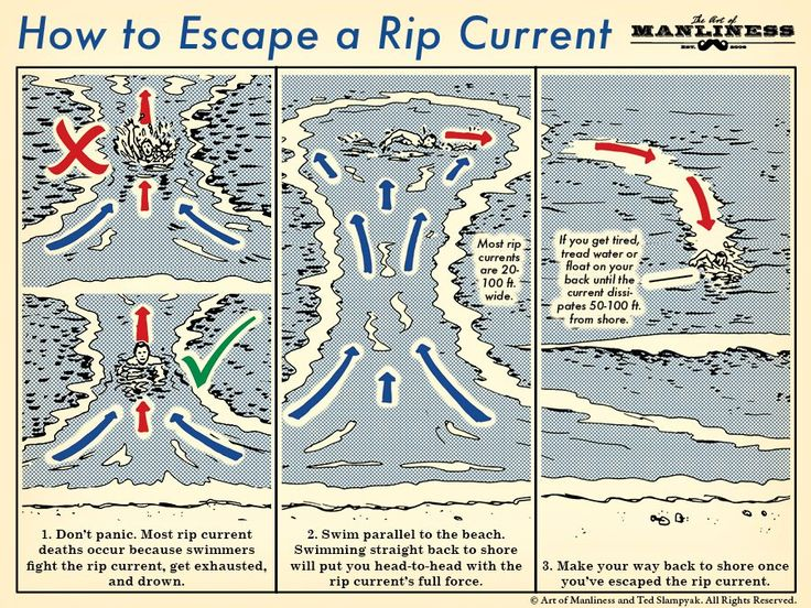 Learn How to Escape a Rip Current With This Handy Illustrated Guide