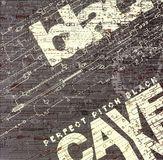 Perfect Pitch Black [CD], CD-HYH-103