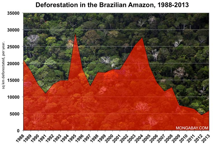 According to a study released in September 2009 by Brazil's National Institute for Space Research (INPE), at least 20 percent land deforested in the Brazilian Amazon is regrowing forest. In turn this graph shows that we have been able to revert some of the heavy damage that was caused to the rainforest through conservation projects and other such means. (INPE,2013)