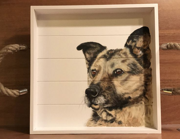 Sweet dog, perfect decoration