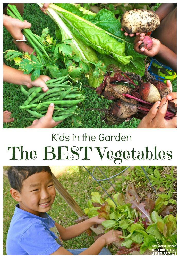638 best gardening with kids images on pinterest gardening balcony and fruit garden - Vegetable Garden Ideas For Kids