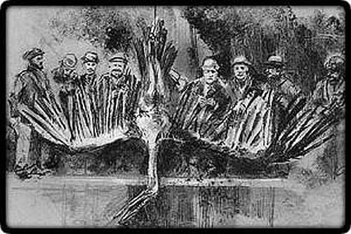 """(Myself and 4 other boys) saw a two-page spread of a pteranodon-like creature, nailed to what looked like a barn door, with a group of miners or cowboys in large hats & long grey beards, all standing in front. Some of the men were in what looked like overalls. I recall this vividly because one of us said """"They're not real cowboys"""", as they looked nothing like Gunsmoke or"""