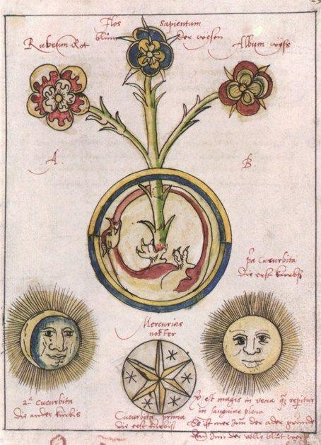 Hieronymus Reusner Pandora 1588