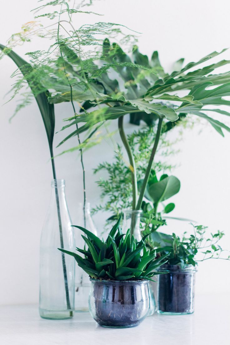 Greenery, it's nice to use foliage from the garden instead of flowers & cost effective too!