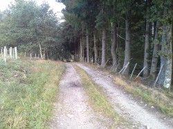 """[Corrèze] Variéras On peut choisir de partir sur la boucle nord ou sud. La boucle sud est plus roulante mais un peu plus longue avec plus de D+.  La boucle nord est plus courte d'environ 6 km et plus intéressante du point de vue du VTT, surtout dans le bois de Tempêtier.  Nous suivons en grande partie les pistes VTT balisées (37, 40, 34 et 35) par """" l'Espace VTT Haute-Corrèze""""."""