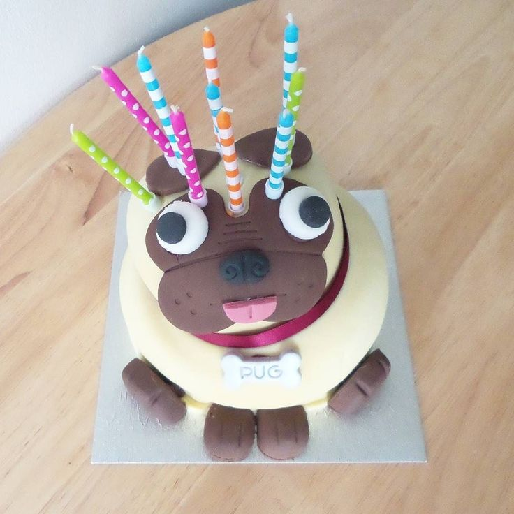 sofa coverings dogs leather repair kit lowes how cute is the pug birthday cake. can't believe my first ...