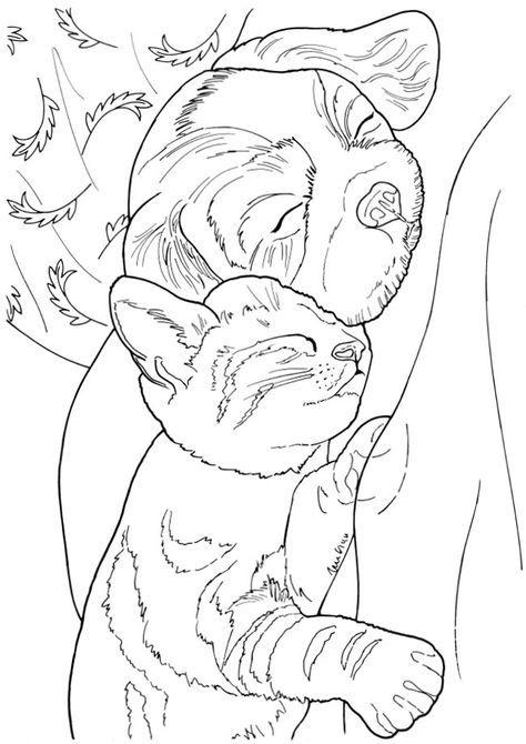 172 best Dog Coloring images on Pinterest Coloring books, Coloring - new snow dogs coloring pages
