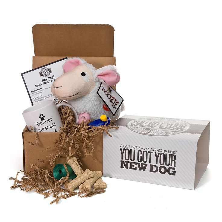 Good Gifts For Dog Lovers Part - 48: YOU GOT YOUR NEW DOG KIT | Pet Supplies, Dog Gift, Pup | UncommonGoods