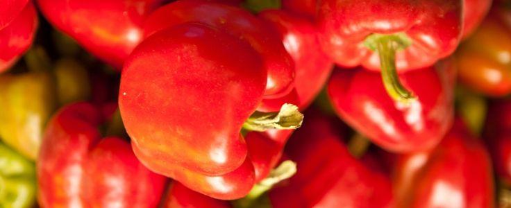 12 modi di cucinare i peperoni