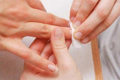 De la préparation du microorganisme végétal des ongles